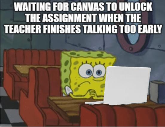 Student Meme Wall Image