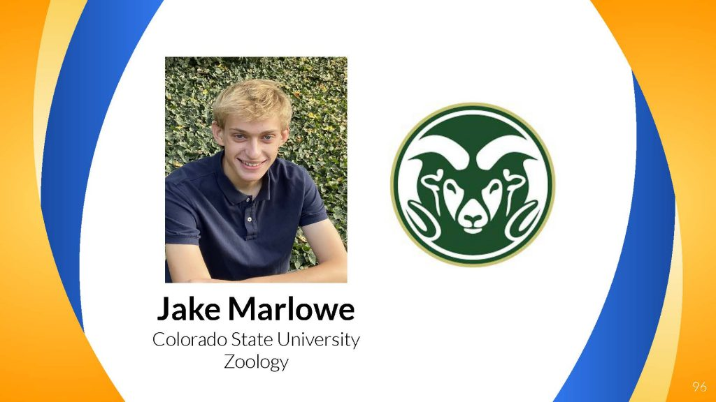 Jake Marlowe